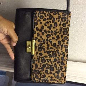 Fossil clutch